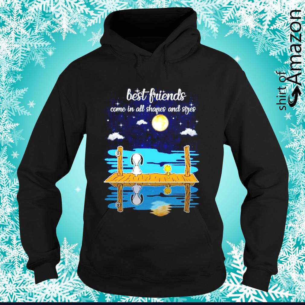Snoopy and Woodstock best friends come all shapes and sides hoodie