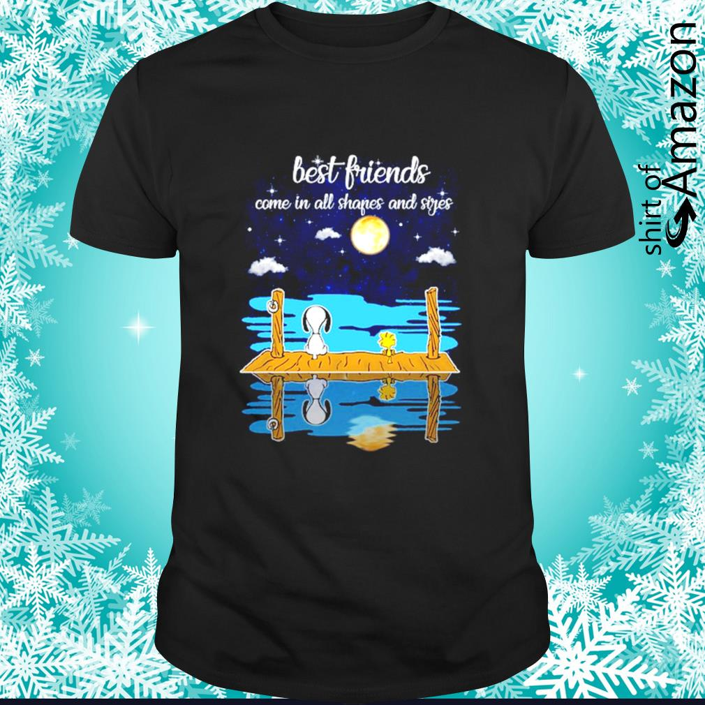 Snoopy and Woodstock best friends come all shapes and sides shirt